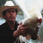 Ein Abend für Charles Willeford: Film und Lesung Cockfigher